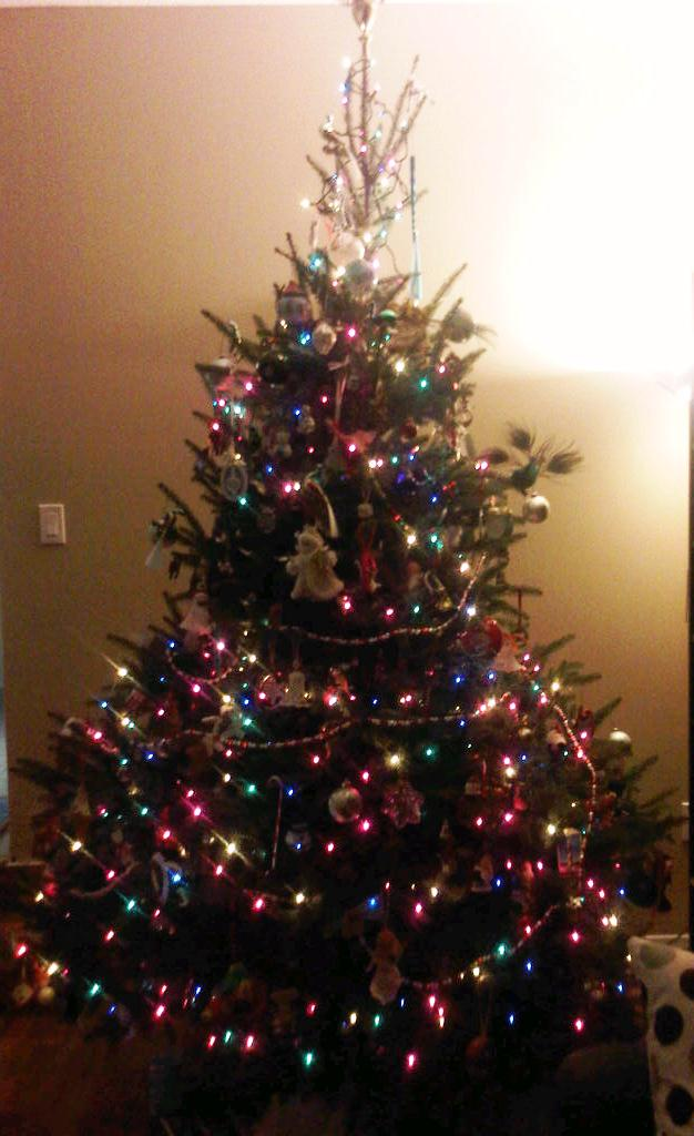 2011's version of our Christmas Tree