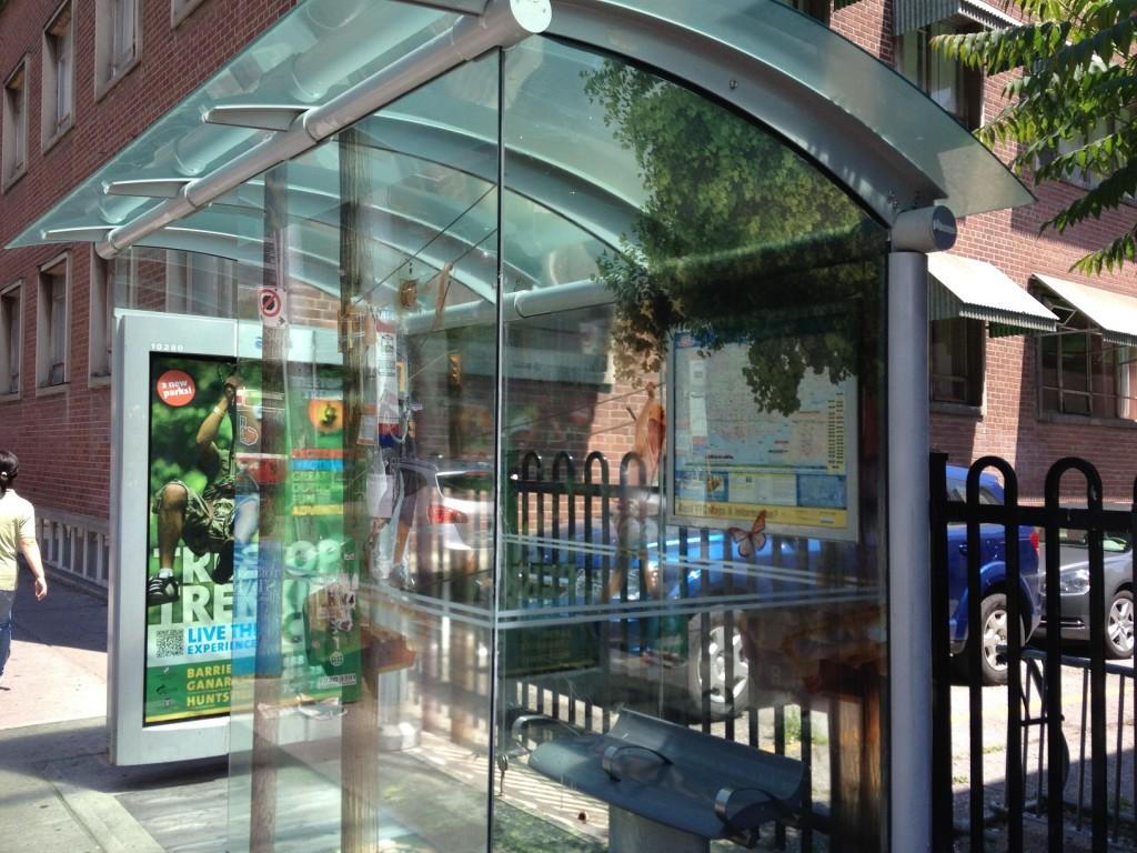 TreeTopTrekking's TTC Bus Shelter Ad (interior)